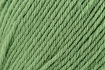 Deluxe Bulky Superwash 910 Greenery