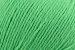 Deluxe Bulky Superwash 912 Shamrock Smoothie