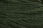 Deluxe Chunky 22296 Green Leaf