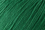 Deluxe DK Superwash 836 Christmas Green
