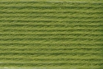 Deluxe Worsted 61633 Greenery