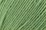 Deluxe Worsted Superwash 710 Greenery