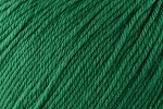 Deluxe Worsted Superwash 738 Christmas Green