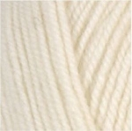 Encore Worsted 0146 Winter White